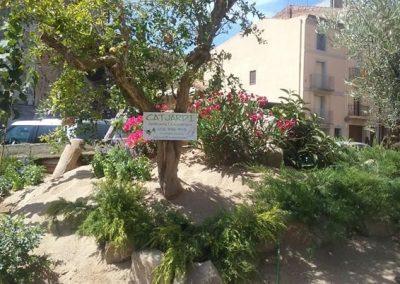 expertos en mantenimiento de jardines en Tarragona