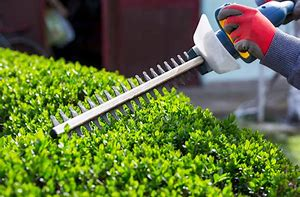 empresa de mantenimiento de jardines en Cambrils