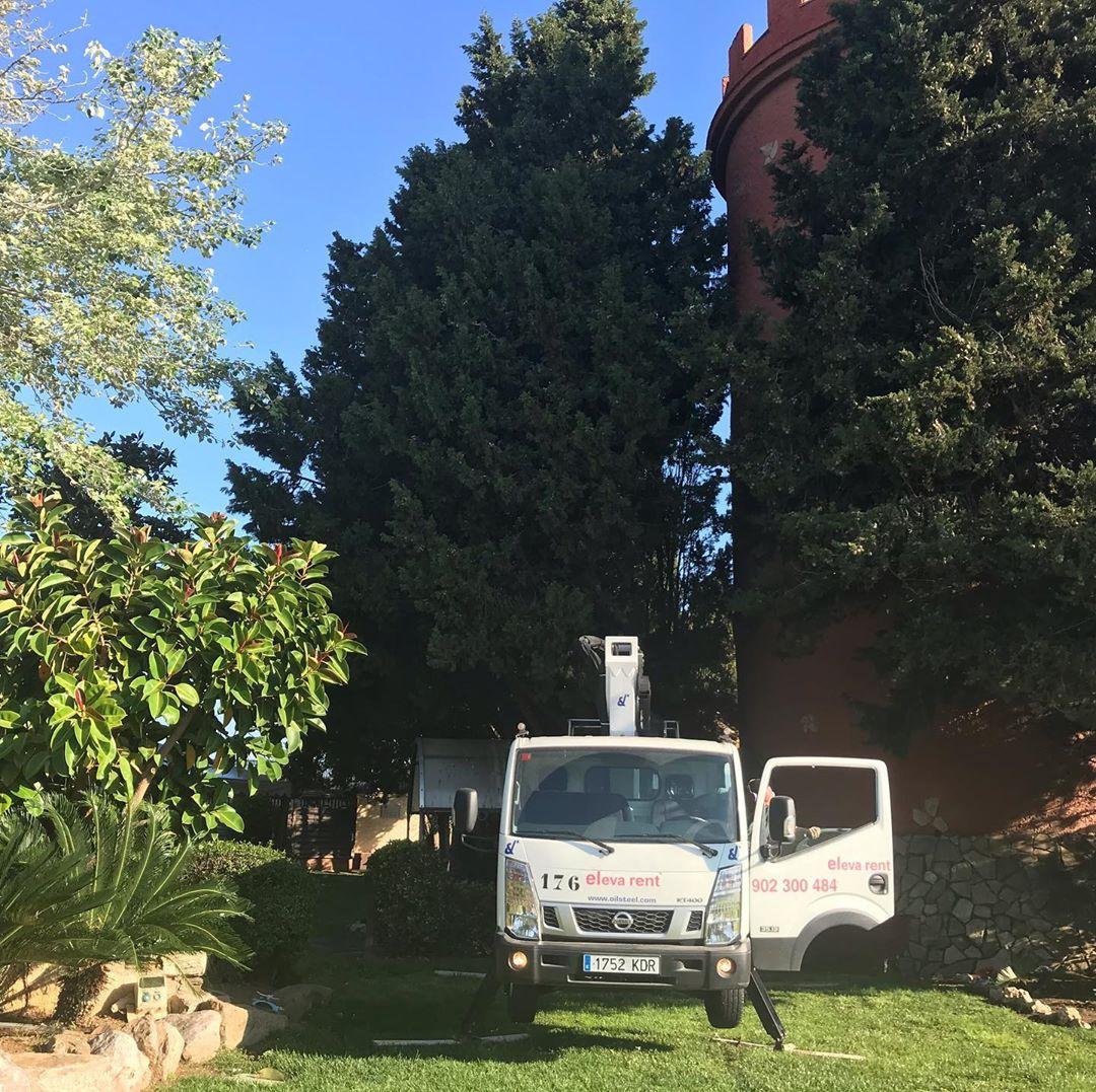 empresa de poda de árboles en Cambrils